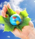 save the world concept with hand leaf and globe