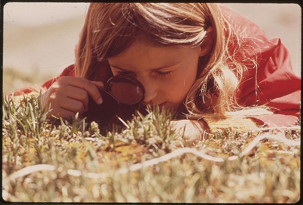 1280px-girl_uses_a_magnifying_glass_to_study_plant_life_in_the_tundra_of_the_rocky_mountains-_the_denver_pta_sponsored_a-_-_nara_-_543740